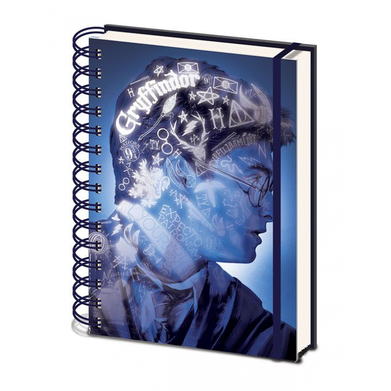 Agenda Harry Potter Magic Portrait 3D A5 SR72499 Harry potter Agende