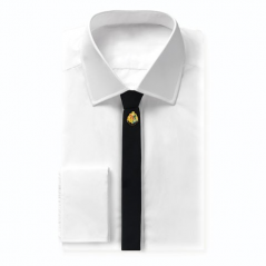 Cravata Harry Potter Hogwarts Deluxe Box - ORIGINALA - CR1110