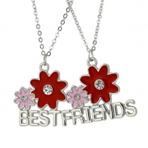 Set 2 Lantisoare Cu Pandantive Best Friends BFF Floricele bff545 Best Friends Medalioane BFF