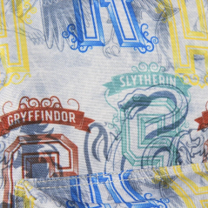 Ghiozdan Rucsac Harry Potter - Gryffindor, Hufflepuff, Ravenclaw, Slytherin 300X410X140 MM 2100002535 Ghiozdane